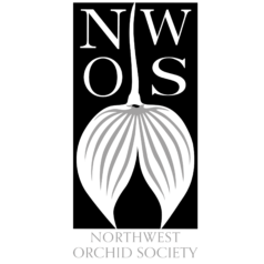 Northwest Orchid Society